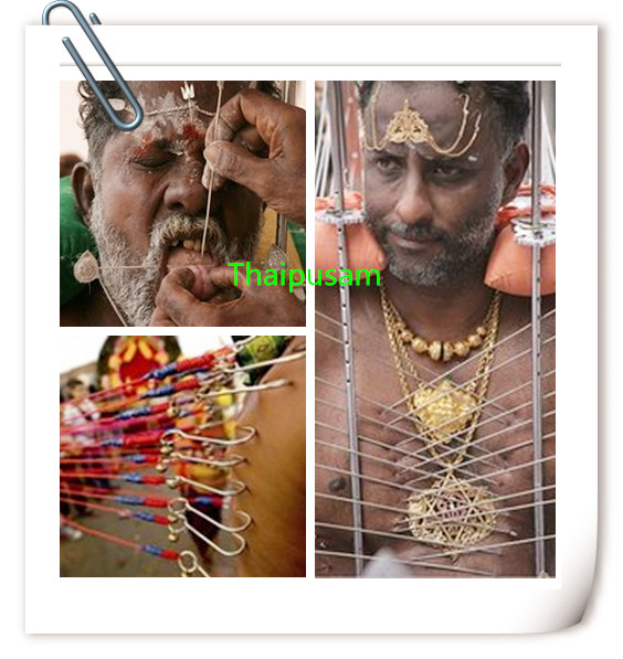 The Thaipusam in Indian