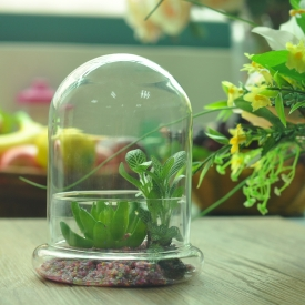 China glass cloche bell jar factory